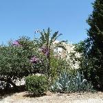 Jardin maison d'Abraham