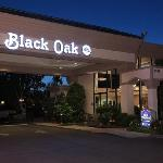 Bilde fra Best Western Plus Black Oak
