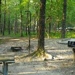 Degray state park campgrounds