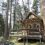 Sugar Pine Cottage
