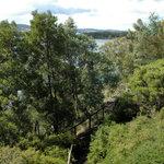 Inverawe Native Gardens