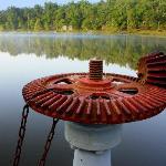 Lock on the Dam, Pennyrile Lake