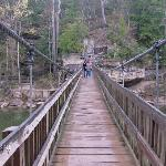Suspension Bridge at Turkey Run State Park