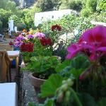 Colourful restaurant terrace