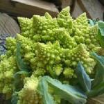 Romenesca Cauliflower