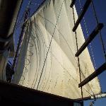 Sails of Intombi