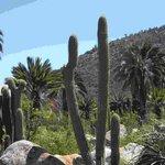 Foto de Fueguinos Nature Trips