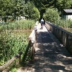 biking at de Eemhoff