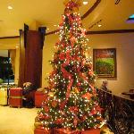 クリスマスの時はツリーがきれいだった。