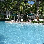 Très belle et grande piscine