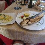Sea bass and artichokes