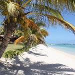 Taxi Mauritius - Private Tour Foto