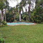 Uitzicht op zwembad