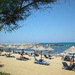 Malia park beach