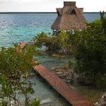 Vista desde nuestra Suite Tikal