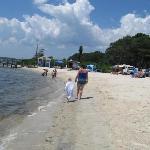 Dog Beach Area