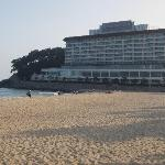Westin from the Beach
