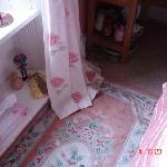 carpet and stained curtains
