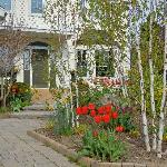 Front Entrance with Tulips and Daffodils in Bloom