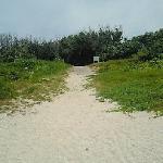 白い砂の道を通って