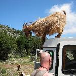 Debra at Goat Valley.