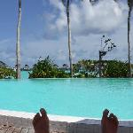 My daily view from my sunbed at the Club pool