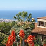 Finca Casa-Vieja mit Blick auf Puerto de la Cruz