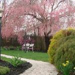 Gaslight and Garden
