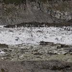 lago congelado cerro tronador
