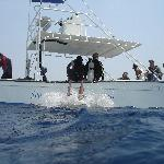 one of Seagrapes dive boats