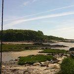 Vaughn's Island Preserve
