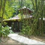 Bambu Cabins