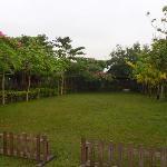 Foto de The Phou Iu Guest House and Restaurant