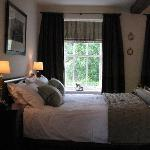 bedroom (torsin)