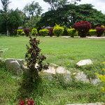 Photo of Green Valley Resort
