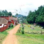 Photo of WelcomHeritage Regency Villas