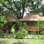 Photo of Jaldapara Jungle Camp