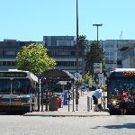 UBC Bus Loop