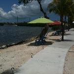 Ibis beach