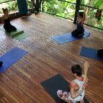 Our yoga/ aerial silk studio!