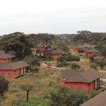 Foto de Kilima Safari Camp