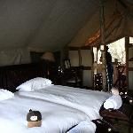 plain camp