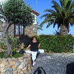 Devant l'hôtel entre palmier et olivier...