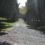 Driveway to Little Page Inn