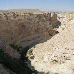 Ein Avdat Canyon - after the hike