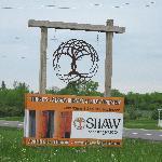 Favorite vineyard...Shaw Vineyard