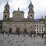 Plaza and its pigeons