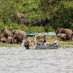 Water Safari at Mweya Lodge