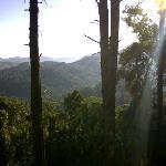 """Vista do chalé """"do bosque"""" pela manhã"""
