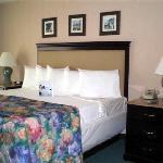 Temper-pedic mattresses in all 310 suites!